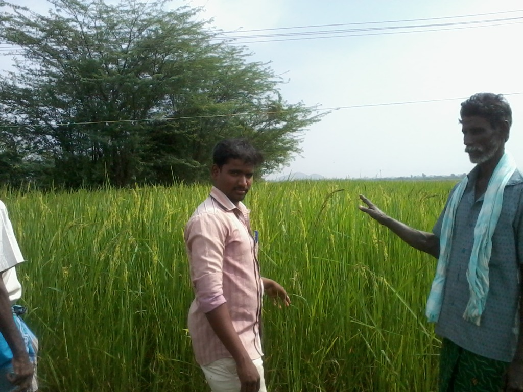 Mr.Sargunam of CIKS  visited our farm.